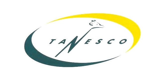 Technical 'glitch' at fault for latest power blackout, says TANESCO