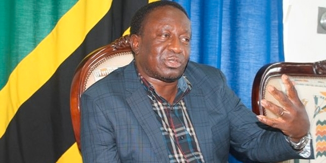 Mwakyembe tasks NSC to temporarily oversee swimming administration
